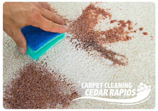 Cedar Rapids Stain and Odor Removal Service