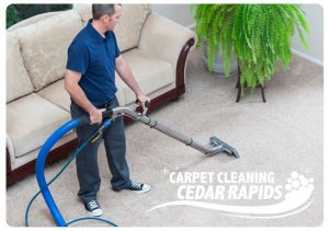 carpet cleaning springville