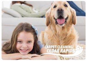 carpet cleaning wyoming